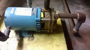 Bluffton Jockey Pump